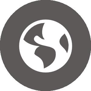 icon-2-scharfsinn-webdesign-agentur-hosting-homepage